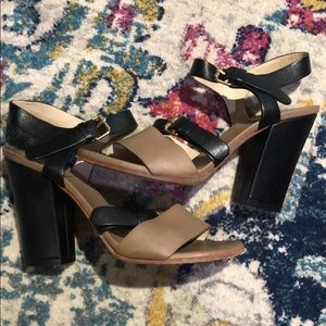 Chloe Black & Tan With Gold Buckles - Block Heel